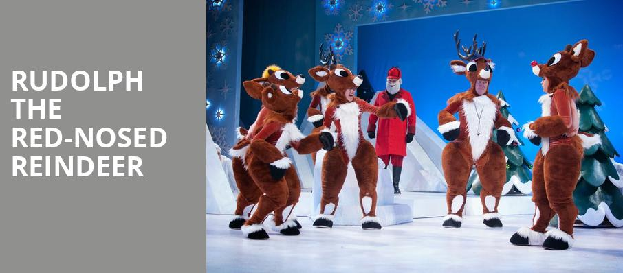 Rudolph the Red Nosed Reindeer, Bob Carr Theater at Dr Phillips Center, Orlando