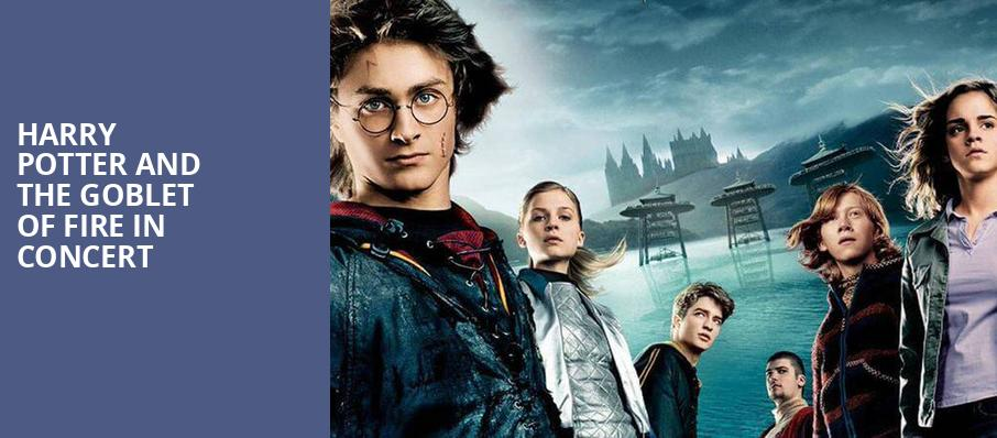 Harry Potter and the Goblet of Fire in Concert, Walt Disney Theater, Orlando